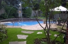 Palm TreeABrampton Swimming Pool Opening, Maintenance, Service, Repair & Stamped Concrete - Bolton, Mississauga, Georgetown, Brampton, GTA Swimming Pools Brampton, Toronto, Georgetown